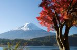 Japan's tourism market is back on track - Kyoto Travel News
