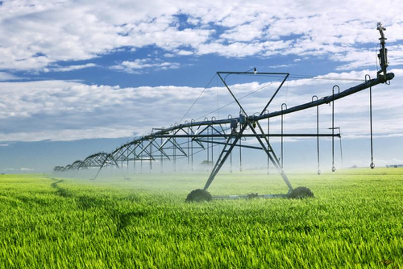 Irrigation system waters crops