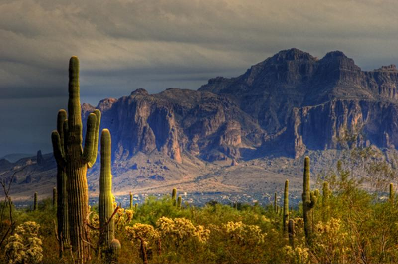 The desert landscape of Arizona makes Phoenix a unique destination for travelers looking to experience the American Southwest.