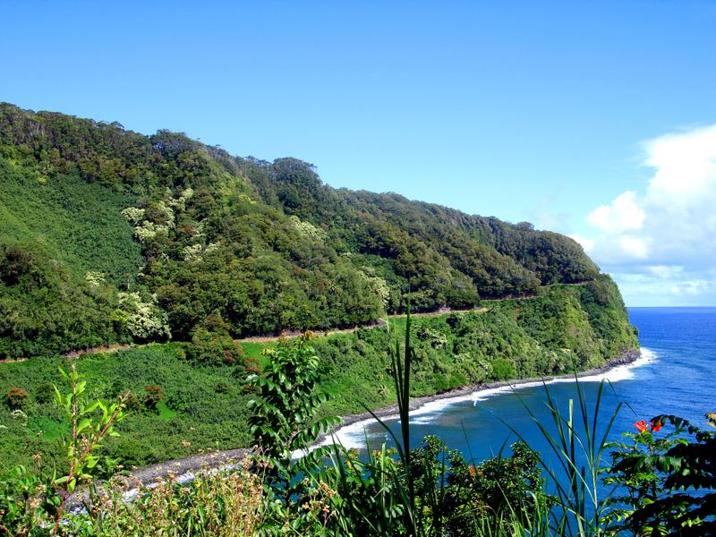 Taking a cruise along the Hana Coast is not only a beautiful experience, but it's also completely free.