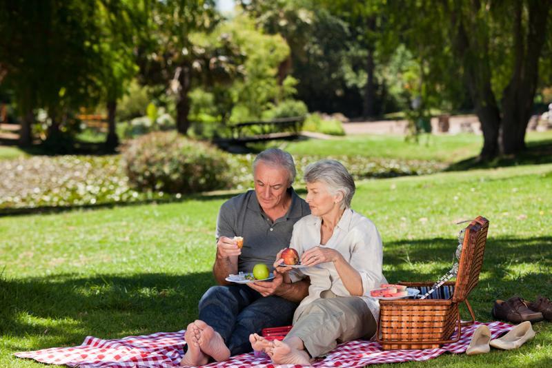seniors, picnic, outdoors