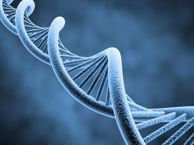 Genetic tests are at the heart of a securities class action suit.