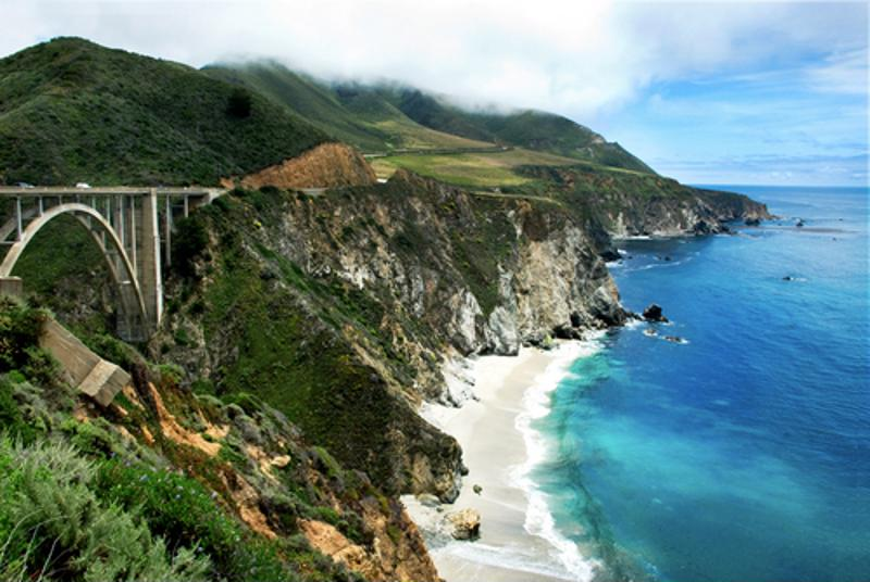 Make your way to Big Sur this January to forage with the best of them!