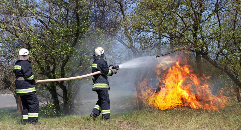 Two firefighters spray a wildfire with a fire hose.