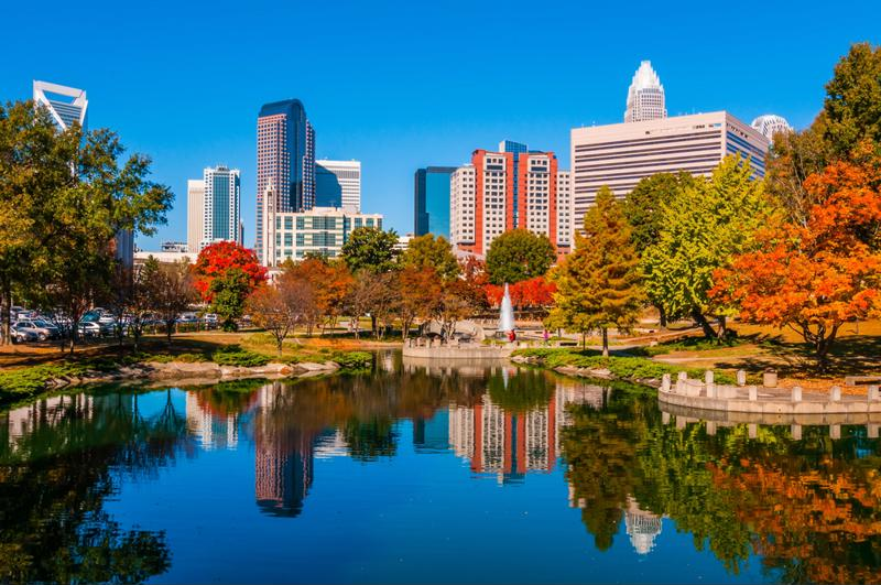 Charlotte stands out for the success of its finance sector, but other industries are blooming as well.