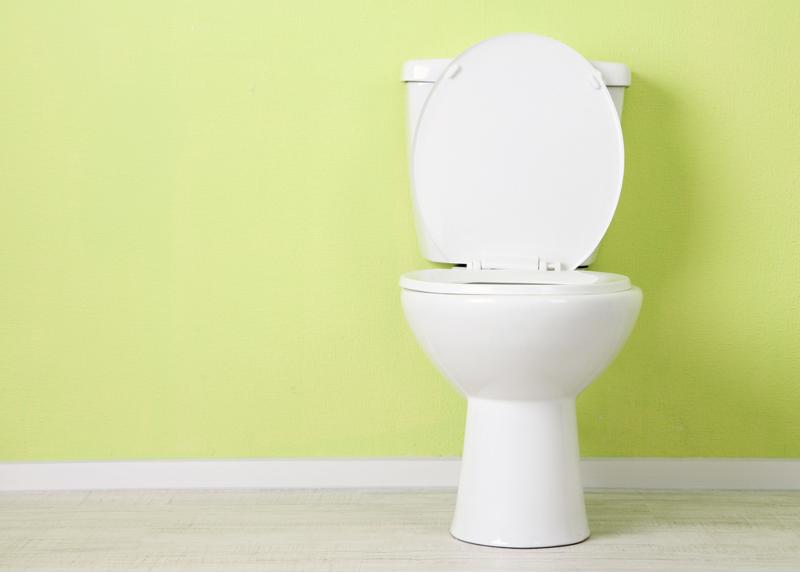 Toilet in lime green bathroom.
