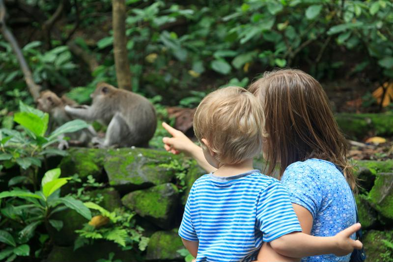 Zoos and aquariums can use predictive analytics to make guests happy.