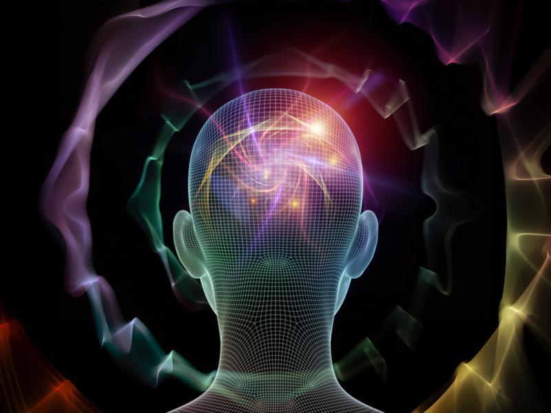 cognitive psychology brain head skull