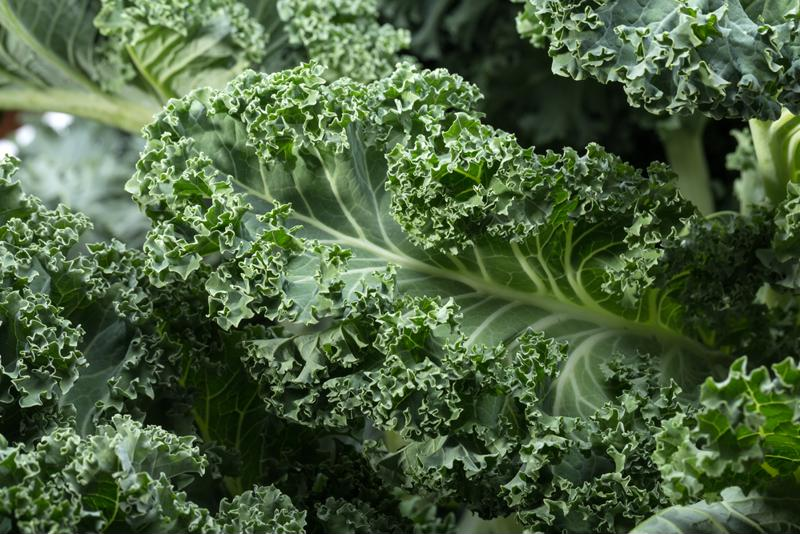 Kale is an excellent natural source of iodine.