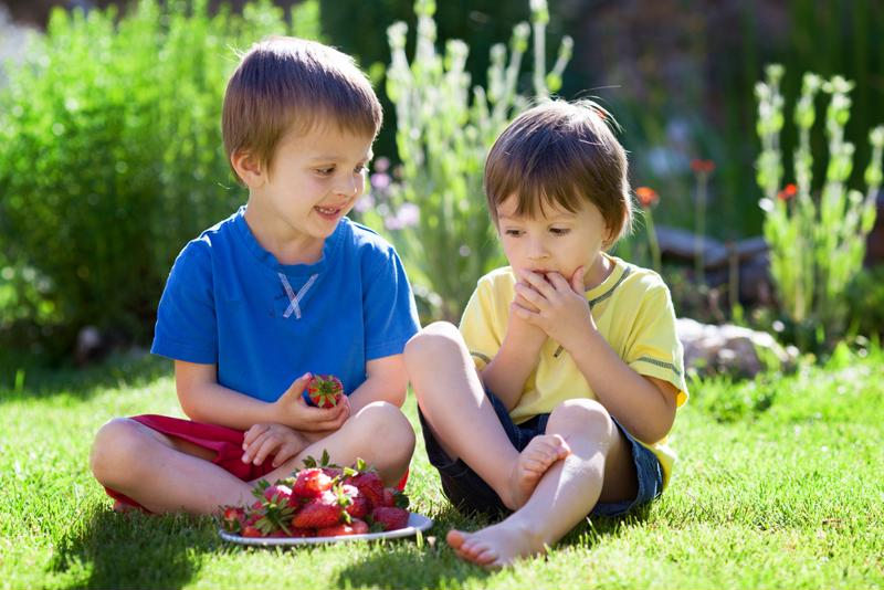 Have your children gather fresh strawberries for this recipe.