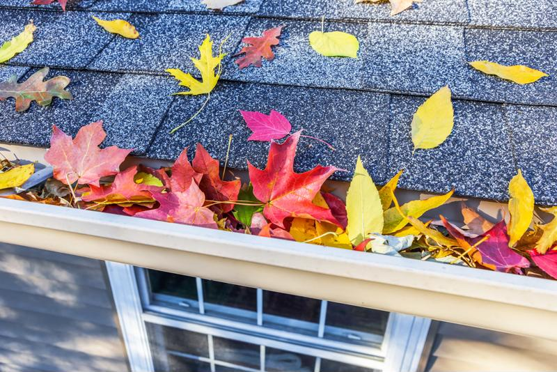 Cleaning the gutters is one of the most important fall chores to take care of.