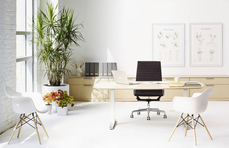 Use potted plants to bring some green into your office space.