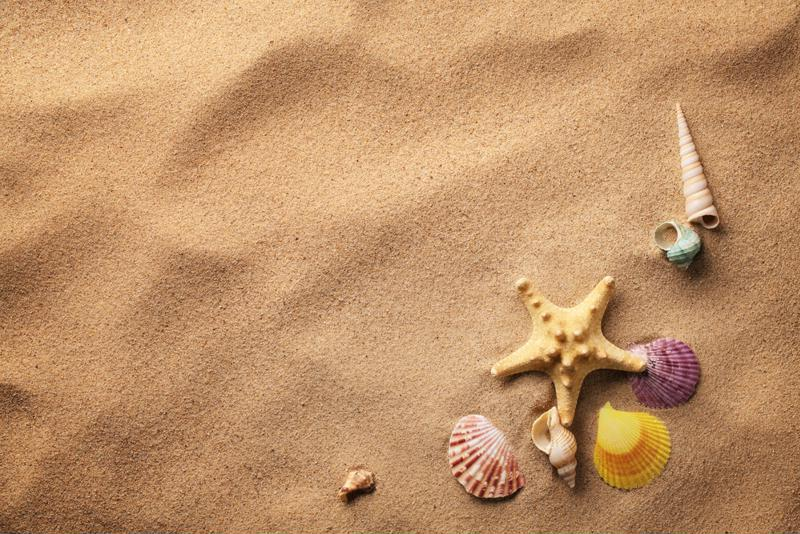 Add shells and seaglass for a more realistic experience.