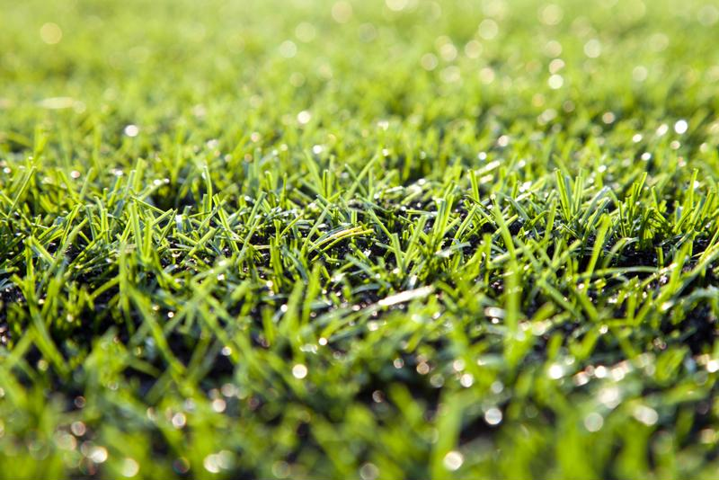Your artificial turf will be looking this realistic in no time.