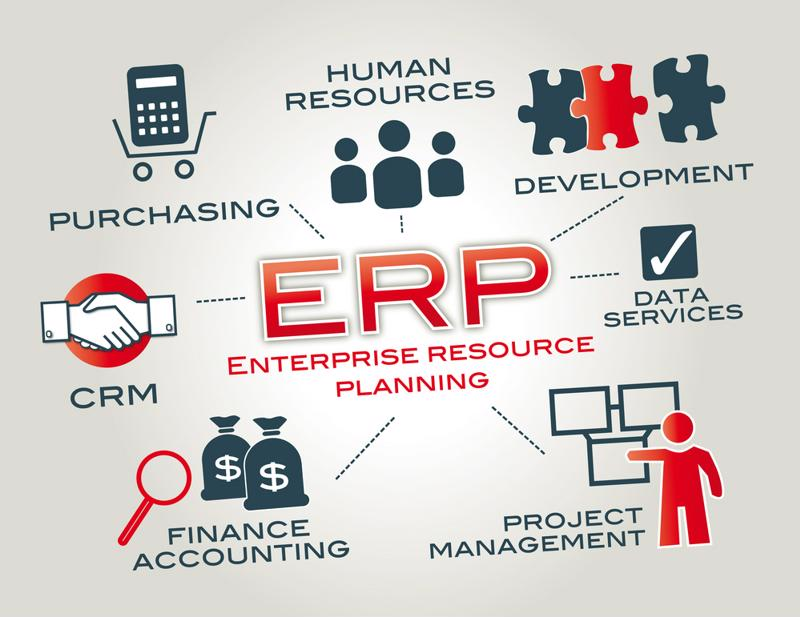 A diagram of different ERP components.