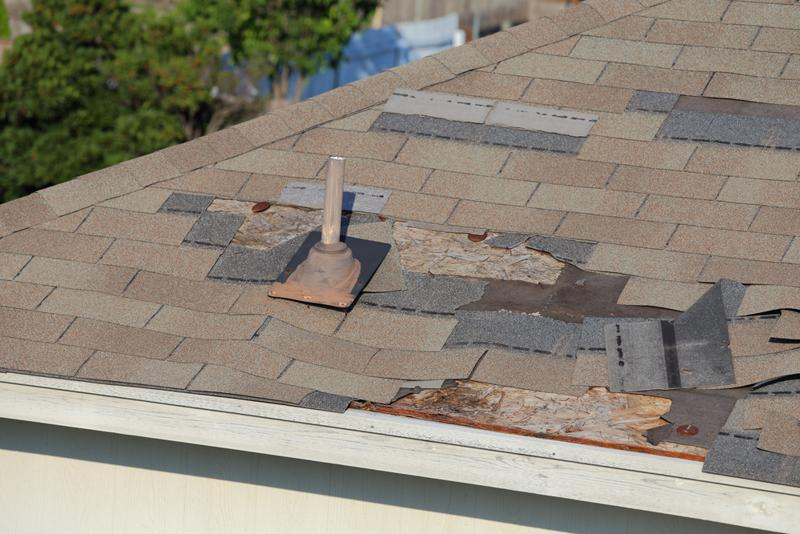 Replace broken shingles on your roof.