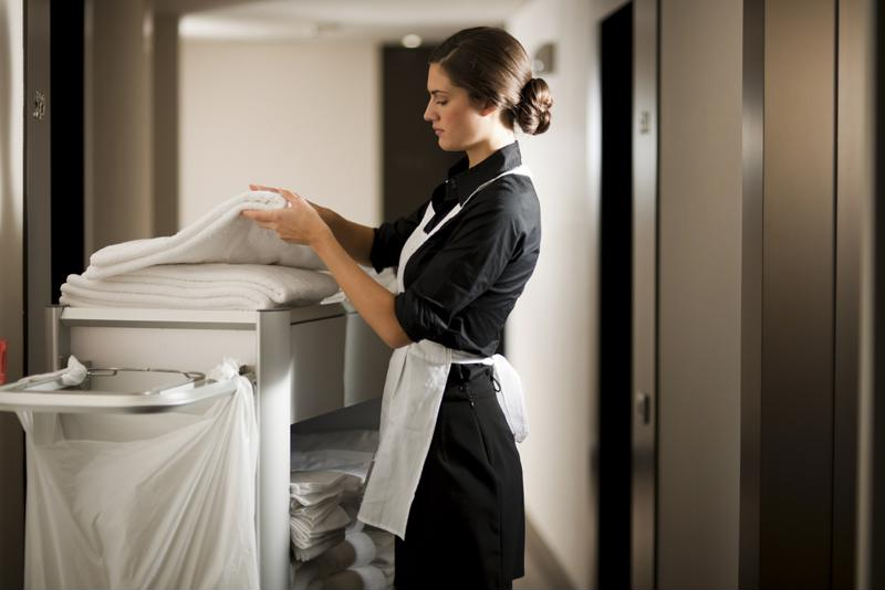 Attentive cleaning practices are one way to fend off insects in hotels.