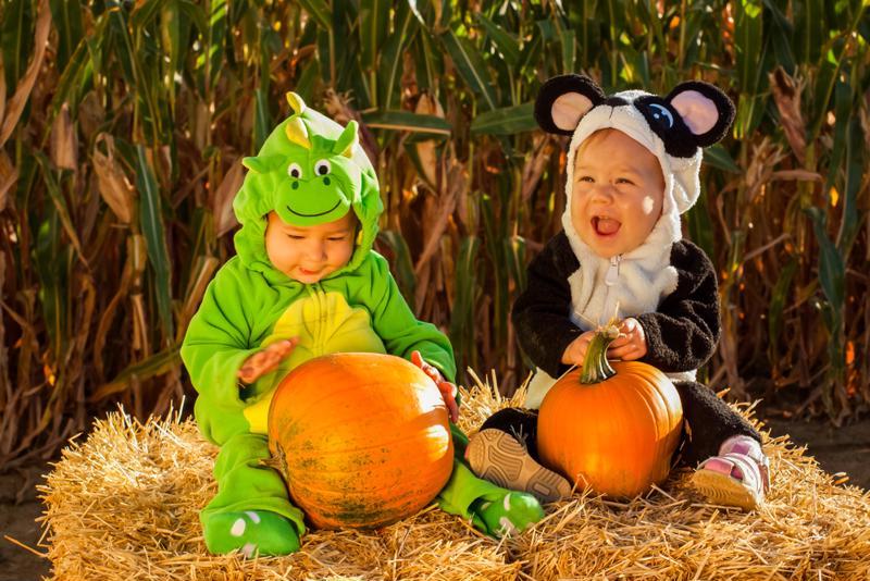 Kids with pumpkins on Halloween.
