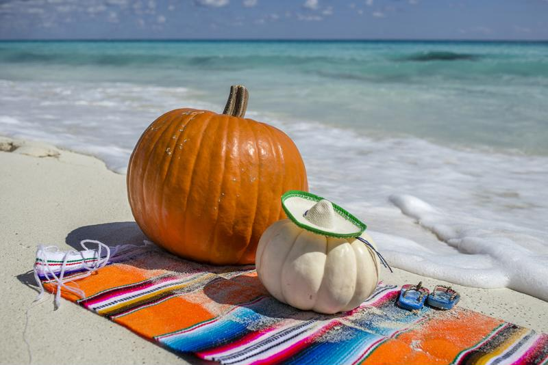 Celebrate Thanksgiving on the beach.