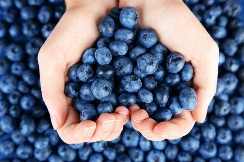 Enjoy sweet blueberries in this lemonade recipe.