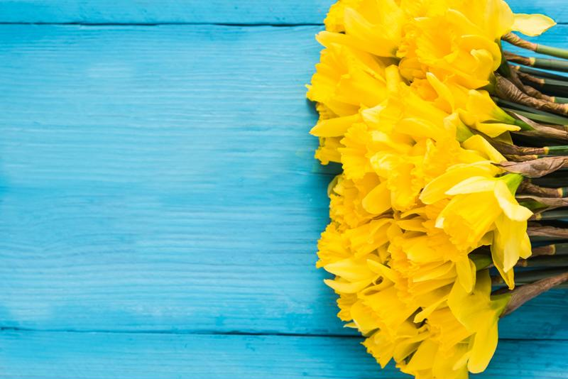 Adding fresh flowers to the kitchen and guest bedroom is a great way to make your indoor air smell great.