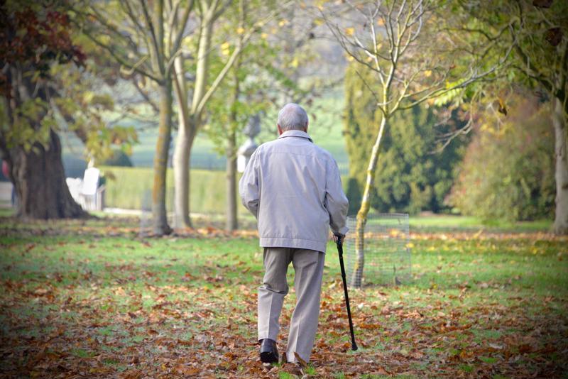 dementia, memory loss
