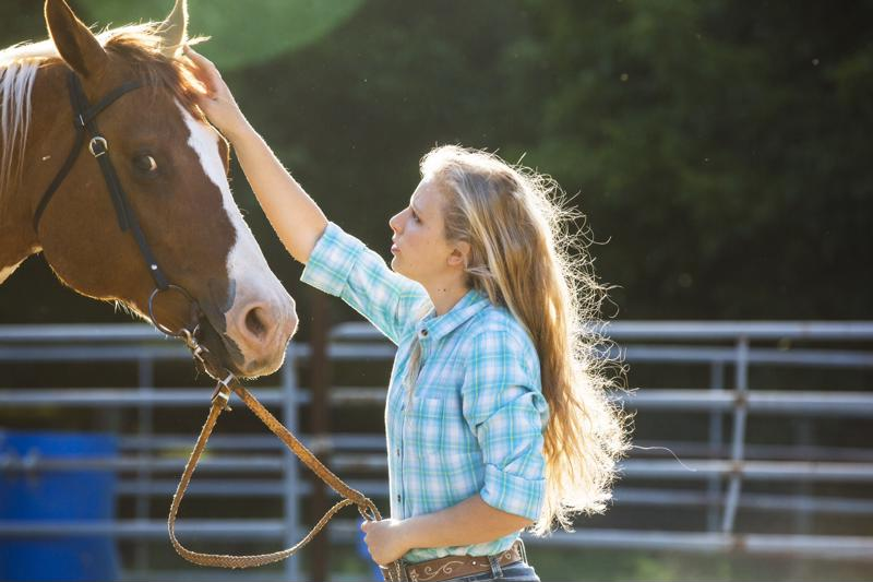 Horses mirror human emotions, making them effective for therapy.