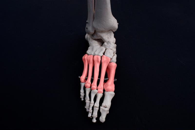 The complexity of your feet means they're susceptible to injury.