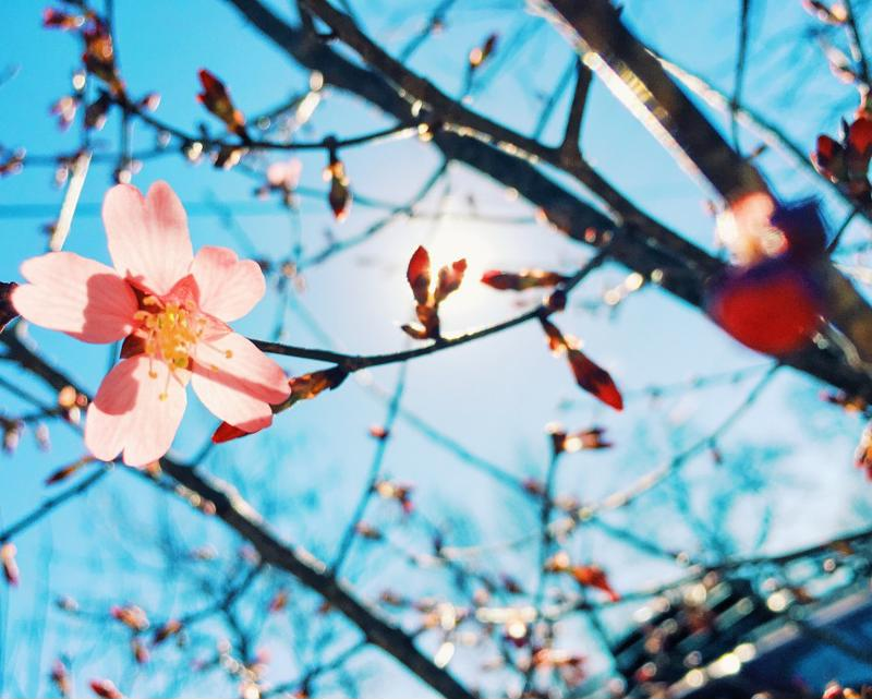 Anticipate the spring with energy efficiency best practices