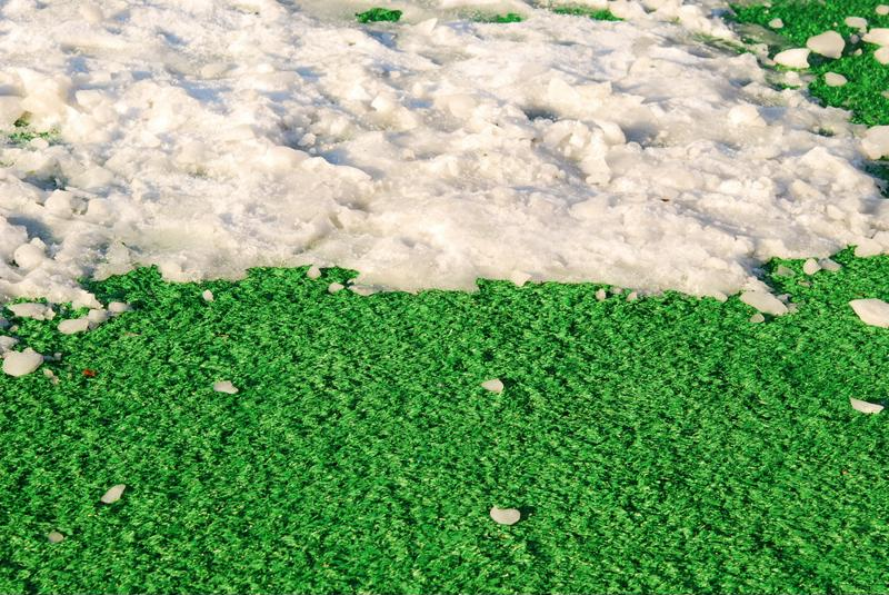 A poorly maintained pasture can lead to a devastating slip and fall.