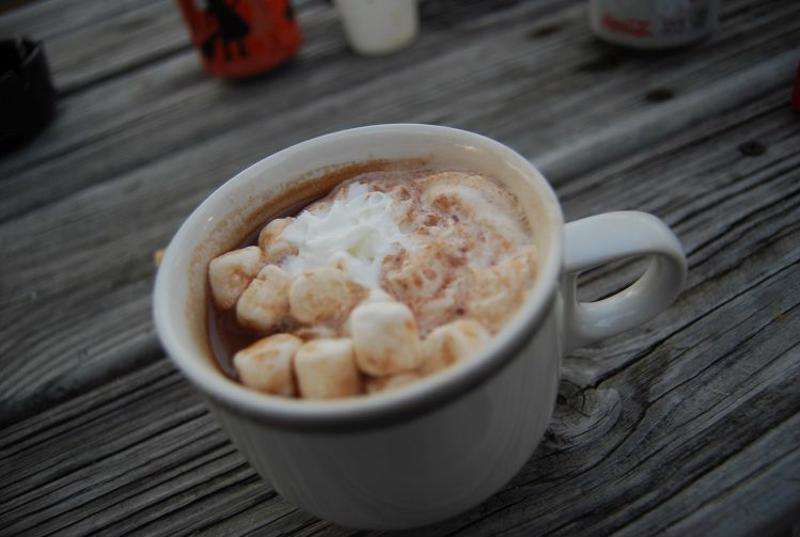 Mug of cocoa with miniature marshmallows.