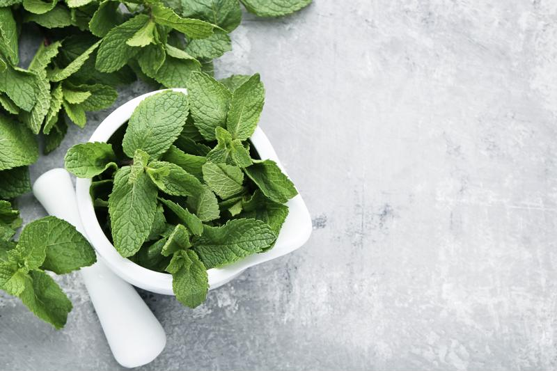 A bowl of herbs sitting on a prep table.